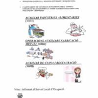 projecte joves per l'ocupació C4_2015-6.jpg
