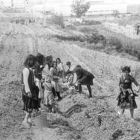 Alumnes Escola Santa Maria 1975_4337