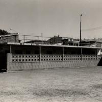 Camp municipal d'esports_8574