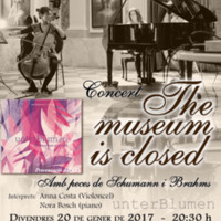Concert 'The museum is closed' C120_2017-1.jpg