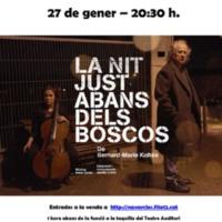 """Teatre """"La nit just abans dels boscos"""". 2018"""