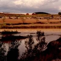 Riu Llobregat_8618